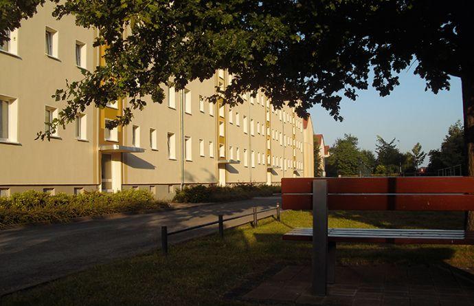2,5-Raum-Wohnung mit Balkon Nähe Stadtzentrum, Großenhain