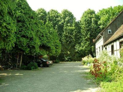 1 Garten / Zufahrt