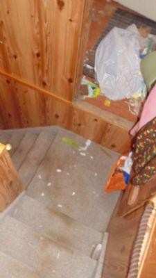 Treppenaufgang zu OG und Dachboden