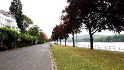 Rheinpromenade nur 50 Meter entfernt