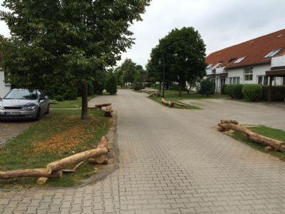Bliesdorf, Oder Wohnungen, Bliesdorf, Oder Wohnung mieten