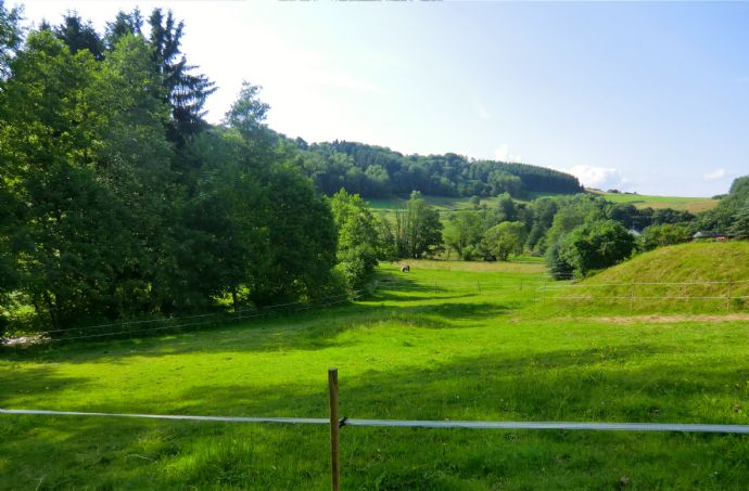 Zerf, sonniges Grundstück, ruhige Lage direkt an der Ruwer