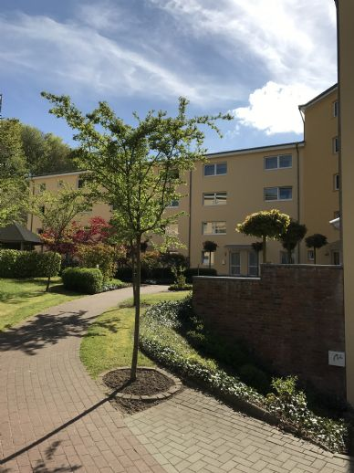 Altengerechte und schöne Wohnung im Wohnhaus Eiderblick