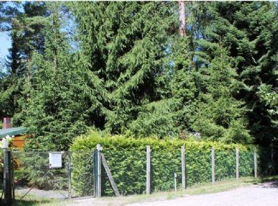 Baugrundstück in Wandlitz sucht Bauherren