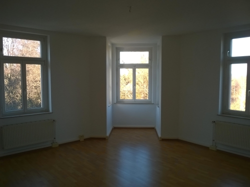 Geräumige und helle 2 Raumwohnung- Tageslichtbad mit Wanne und Dusche- Wohnzimmer mit tollem Erker