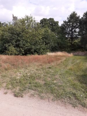 Bleckede Grundstücke, Bleckede Grundstück kaufen