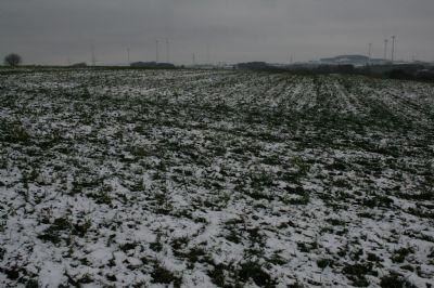 Steinau Grundstücke, Steinau Grundstück kaufen
