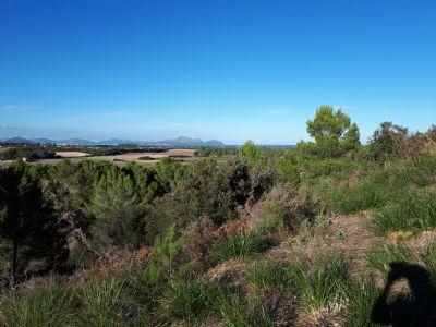 Santa Magalida Grundstücke, Santa Magalida Grundstück kaufen
