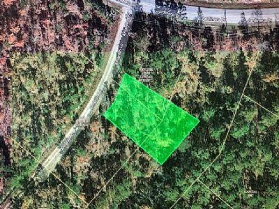 Hot Springs Grundstücke, Hot Springs Grundstück kaufen