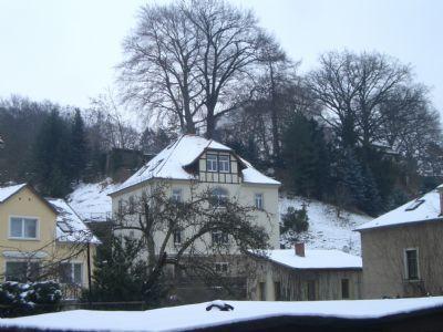 Wachwitz, am Elbhang wohnen