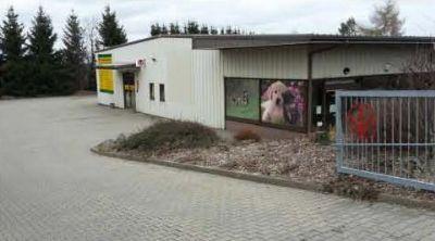 Freiberg Halle, Freiberg Hallenfläche