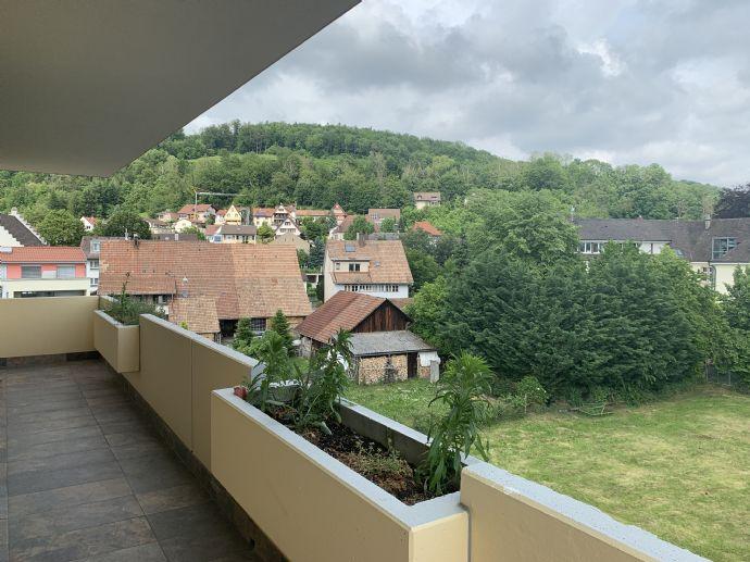 Wyhlen (10 km bis Basel) - beste Lage, frisch renovierte große 2-Zimmer Wohnung mit großem Balkon