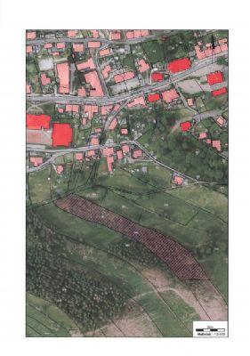 Schönheide Bauernhöfe, Landwirtschaft, Schönheide Forstwirtschaft