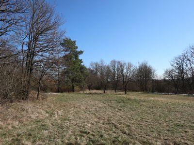 Ostelsheim Grundstücke, Ostelsheim Grundstück kaufen