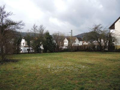 Grundstücksansicht beide DHH