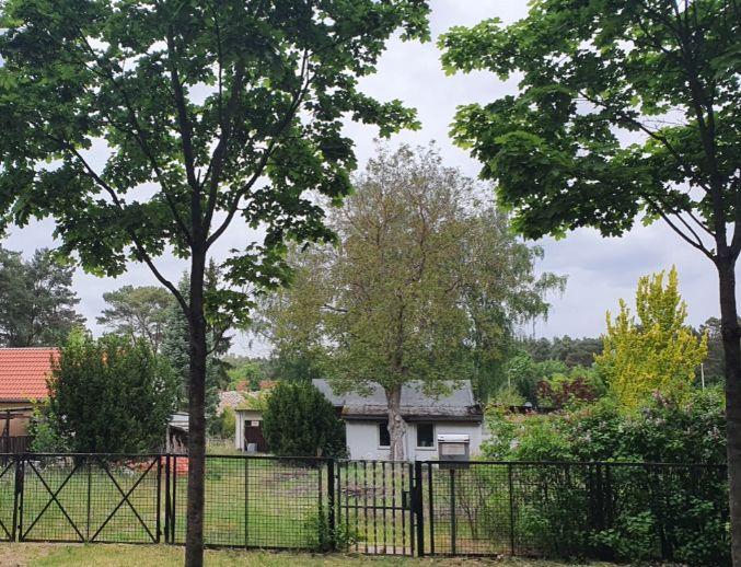 DHH mit Wald und Wasser in Wernsdorf