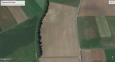 Berngau Bauernhöfe, Landwirtschaft, Berngau Forstwirtschaft