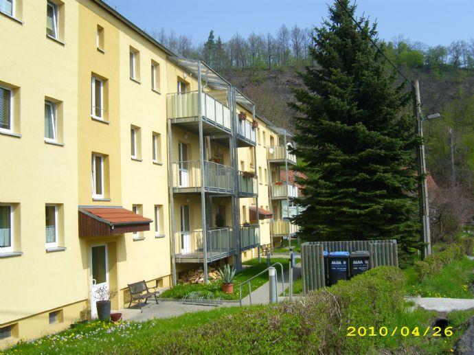 2-Raumwohnung, Opitzer Straße 6, Dresden