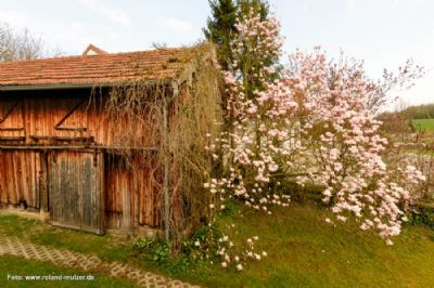 foto--www-roland-mulzer-de--N8H_4912--z900z600q060