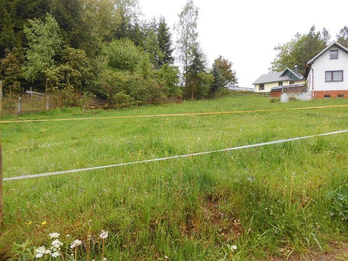 Baugrundstück in Neuhausen
