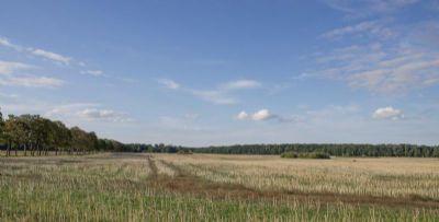 Felder hinterm Haus