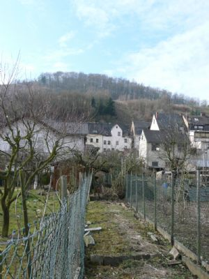 Blick auf Haus und Grundstück