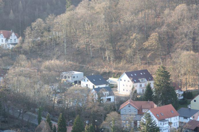 barrierefreie Erdgeschosswohnung mit Garten