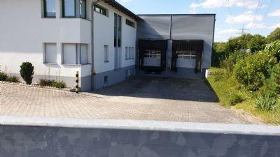 Schwanstetten Halle, Schwanstetten Hallenfläche