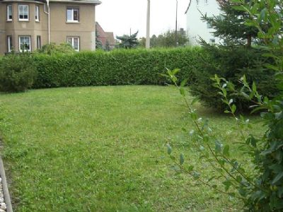 Grünfläche hinter dem Haus