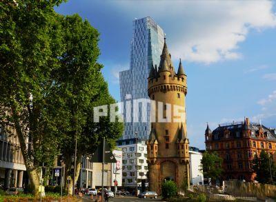 Frankfurt am Main Ladenlokale, Ladenflächen