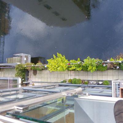lichtdurchflutete 3 zimmer wohnung balkon fahrstuhl. Black Bedroom Furniture Sets. Home Design Ideas
