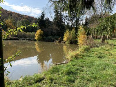Zum Entspannen: Riesiges Wochenend-Grundstück mit Teichen