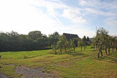Blick vom Nachbargrundstück auf die Baugrundstücke