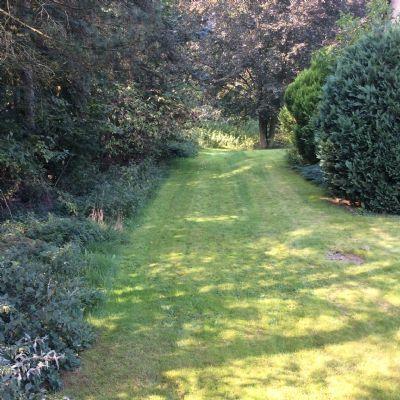 Bild 3 Zufahrt zum Grundstück