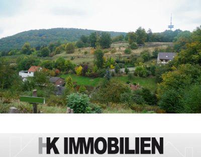 Grundstücke - insges. 10.004 m² - incl. 2 Baugrundstücke - Südhanglage in Porta Westfaica - Preis auf Anfrage