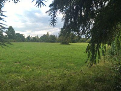 Zur Zeit keine Besichtigung mögl. Parkähnliches Grundstück von 7761 m² in traumhafter und idyllischer Waldrandlage- teilbar ( 1200 m²) für Bauträger!