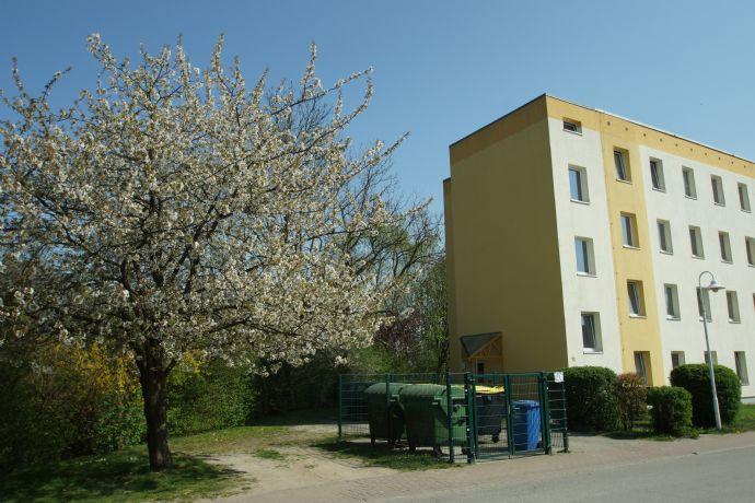 3,5-EG Mietwohnung od. Gewerbe/Büro in Dorf Mecklenburg zw. Wismar Schwerin - günstig & vernünfti