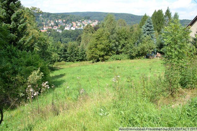 Baugrundstück mit Blick in den Nationalpark Sächsische Schweiz