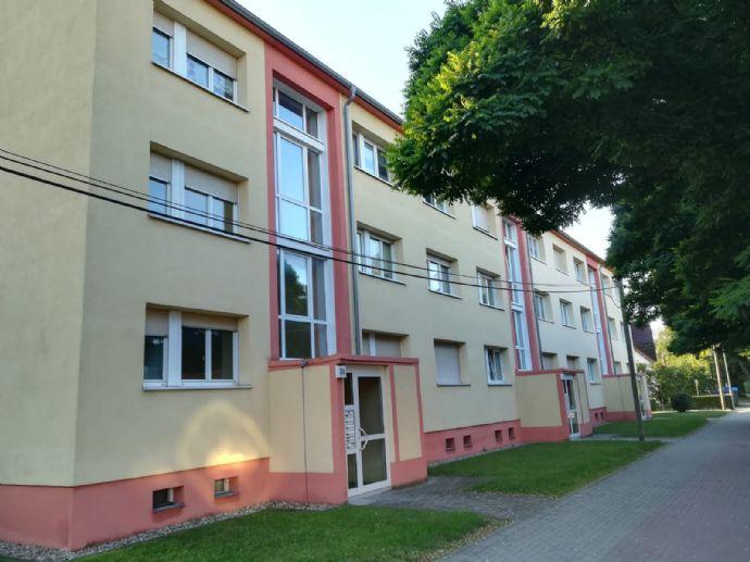 große 1-Raum-Wohnung im Zentrum von Alsleben (Saale)