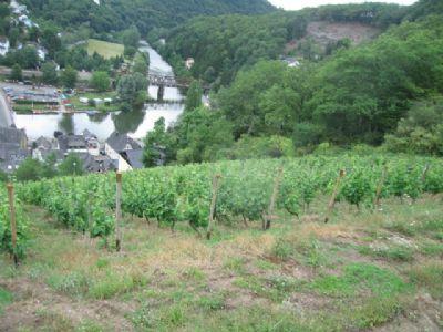 Bauplatz im Weinberg mit Weitsicht zum Kloster und Lahnblick,ruhiger Ort Obernhof