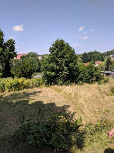 Traumgrundstück - 6.099 qm - Ihre Wohn - Gartenwünsche werden wahr - die Vorteile des Landes in der Nähe der Stadt